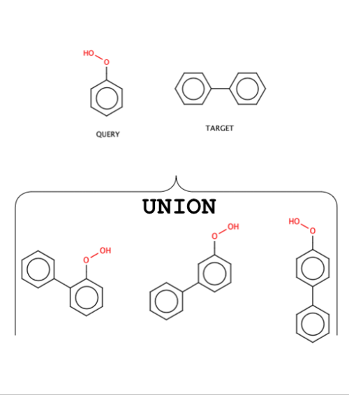 Union between query and target molecule